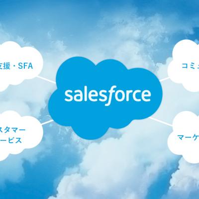 Salesforce導入支援で業務を効率化しよう!